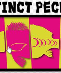 Instinct PECHE