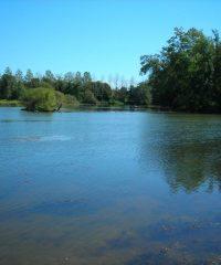 La Saône – Secteur Vereux
