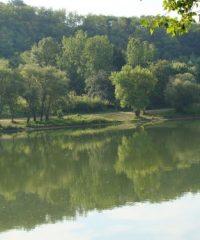 La Saône – Secteur Villefranche Sur Saône