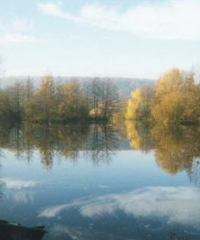 Lac de Roger's