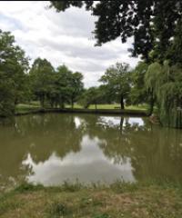 Les 2 Plans d'eau et le ruisseau