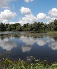 La Loire – Secteur Saint-Aubin-sur-Loire