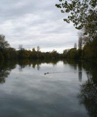 La Marne – Secteur Ussy sur Marne