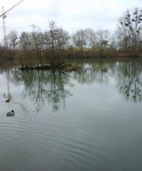 La Marne – Secteur Vaires sur Marne