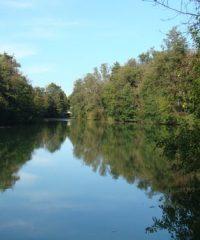 La rivière Ognon – Secteur Boulot