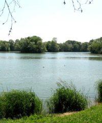 La rivière Ognon – Secteur Marnay