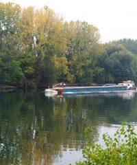 La Seine – Parcours La Frette-sur-Seine