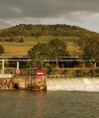 La Rivière Marne