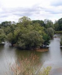 L'étang du Grand Coutance