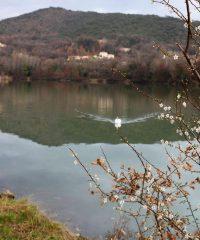 Lac de Turzon