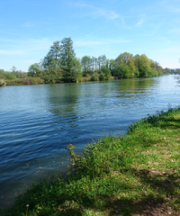 La Saône – Secteur Port sur Saône