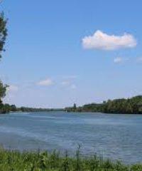 La Saône – Secteur Sancé