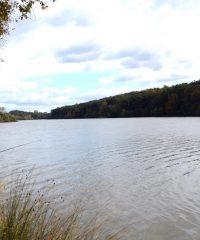 Lac de Tailluret