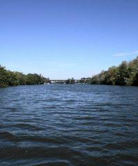 La Saône – Secteur Trugny