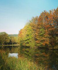 Le Canal de Bourgogne – Secteur Velars sur Ouche