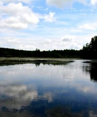 Belvare Lake