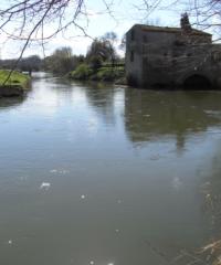 L'Aude – Secteur Puichéric