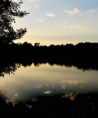 Domaine de la Ribière