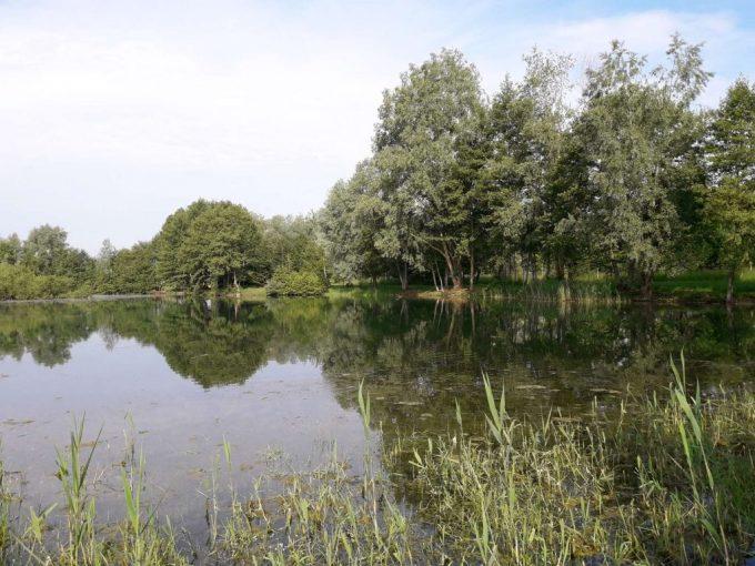 L'étang de « La voie des îles »