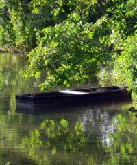 La rivière Indre secteur Palluau sur Indre