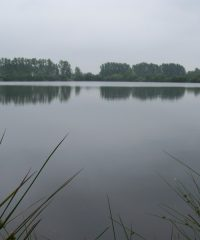 Plan d'eau fédéral des Rouanneraies
